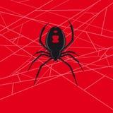 Vetor da aranha da viúva negra Fotos de Stock Royalty Free