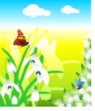 Vetor da borboleta da mola Fotos de Stock Royalty Free
