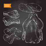 Vetor da carne da galinha ilustração stock