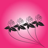Vetor da flor de Rosa Fotos de Stock Royalty Free