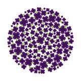 Vetor da flor do roxo do círculo Fotos de Stock