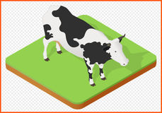 Vetor da vaca Fotografia de Stock Royalty Free