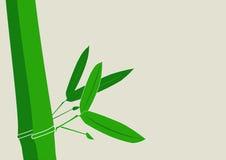 Vetor de bambu do fundo Fotos de Stock Royalty Free