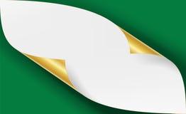 Vetor de canto metálico dourado ondulado O Livro Branco com zombaria da sombra fecha-se acima isolado acima no fundo verde Fotografia de Stock Royalty Free