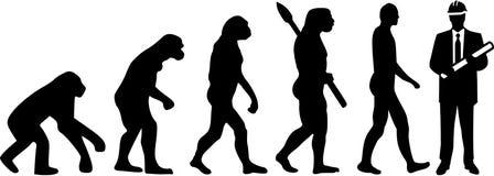 Vetor de Evolution do coordenador ilustração royalty free