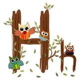 Vetor de madeira da coruja da letra H Imagem de Stock Royalty Free