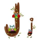 Vetor de madeira da coruja da letra J Fotos de Stock Royalty Free