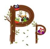 Vetor de madeira da coruja da letra P Foto de Stock Royalty Free