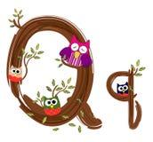 Vetor de madeira da coruja da letra Q Fotografia de Stock