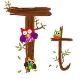 Vetor de madeira da coruja da letra T Foto de Stock Royalty Free