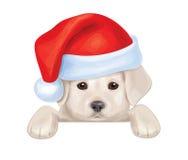Vetor do cachorrinho bonito no chapéu de Santa que esconde pela placa Foto de Stock Royalty Free