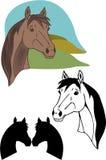 Vetor do cavalo ilustração royalty free