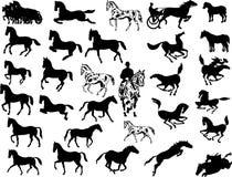 Vetor do cavalo Imagem de Stock