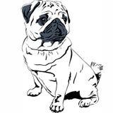 Vetor do desenho da mão da raça do Pug do cão do esboço do vetor ilustração do vetor