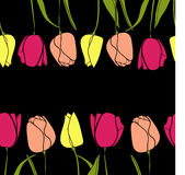 Vetor do fundo da beira da flor da tulipa Foto de Stock Royalty Free