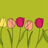 Vetor do fundo da beira da flor da tulipa Fotos de Stock