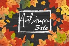 Vetor do fundo de Autumn Sale com as folhas alaranjadas e verdes da queda com fundo de madeira preto da textura ilustração do vetor