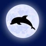Vetor do golfinho de salto no céu noturno com a Lua cheia no fundo Fotos de Stock Royalty Free