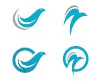 Vetor do molde do logotipo da pomba Imagens de Stock
