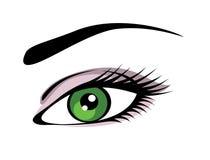 Vetor do olho Fotografia de Stock