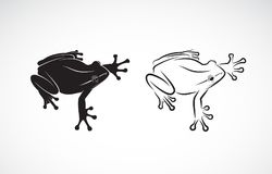 Vetor do projeto da rã no fundo branco anfíbio animal Franco Imagem de Stock Royalty Free