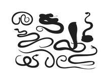 Vetor do réptil da serpente ilustração royalty free