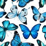 Vetor do teste padrão de borboleta da aquarela ilustração stock