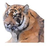Vetor do tigre do triângulo Fotos de Stock Royalty Free