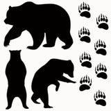 Vetor do urso ilustração stock