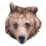 Vetor do urso do polígono Fotos de Stock