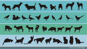 Vetor dos animais domésticos Fotos de Stock