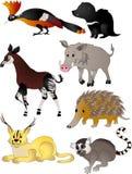 Vetor dos animais dos desenhos animados Fotos de Stock