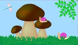 Vetor dos cogumelos Imagens de Stock