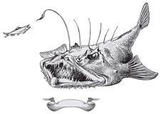 Vetor dos peixes do diabo Imagem de Stock