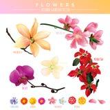 Vetor editável do inclinação das flores Imagens de Stock