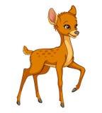 Vetor engraçado dos desenhos animados da jovem corça pequena bonito dos cervos Foto de Stock