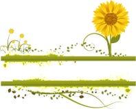 Vetor floral ilustração royalty free