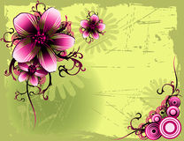 Vetor floral Foto de Stock Royalty Free