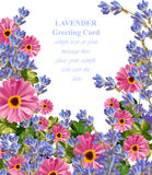 Vetor floral cor-de-rosa do cartão cartão de verão delicado Composição natural fresca da primavera Fotos de Stock Royalty Free