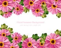 Vetor floral cor-de-rosa do cartão cartão de verão delicado Composição natural fresca da primavera Imagens de Stock Royalty Free