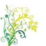 Vetor floral da bandeira Imagens de Stock