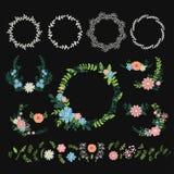 Vetor floral da decoração da grinalda Foto de Stock