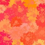 Vetor floral do fundo Imagem de Stock Royalty Free