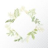 Vetor floral do quadro das hortaliças de Rhombys Imagem de Stock
