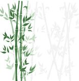 Vetor Forest Background de bambu, molde liso do projeto Fotos de Stock