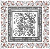 Vetor. Frame bonito com um ornamento da flor Imagem de Stock