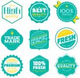 Vetor garantido retro da etiqueta Imagem de Stock