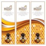 Vetor Honey Banners abstrato Fotos de Stock Royalty Free