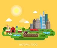 Vetor isométrico liso 3d dos produtos naturais da agricultura da exploração agrícola do alimento Fotos de Stock