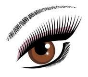 Vetor marrom do olho ilustração stock
